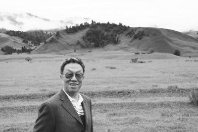 Wang Meng