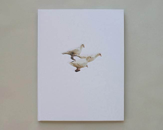 wildpigeonspreads_141208_0146_653